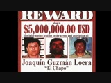 BBC This World- Mexico's Drug War