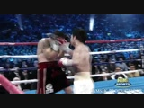 A Tribute To Boxing (HD)