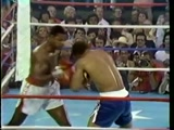 World Heavyweight Boxing -Norton vs Holmes